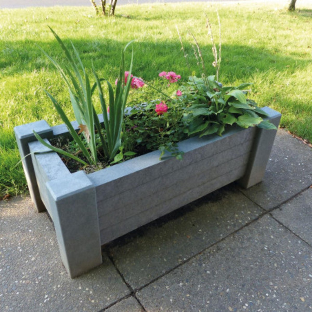 Muscari planter(1)